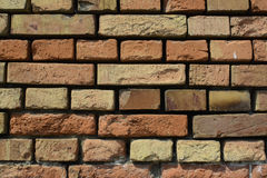 Wall built of brick Stock Images