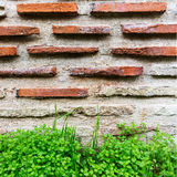 Wall built of natural stone. Can be used as background Royalty Free Stock Images