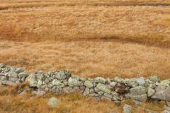 Wall built up with natural stones to protect animals in the mead Stock Photos