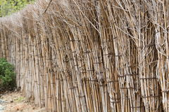 Wall with Bundle of sticks Royalty Free Stock Image