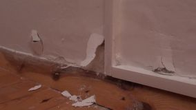 Wall burst with mould. Wall burst with white mould stock video