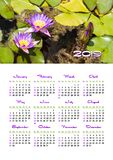 Wall calendar for 2019 year, single page with photo. Yearly wall calendar, 2019 year with nature photo, Week starts from sunday, single page calendar, A3 size stock photo