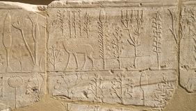 Wall with carved pictorial catalog of the exotic animals and plants from Asia in Temple of Karnak, Luxor, Egypt. Wall with carved pictorial catalog of the exotic royalty free stock images