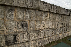 Wall of carved skulls, Mexico. Mayan wall of carved stone skulls, Chichen Itza, Mexico royalty free stock image
