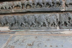 Hoysaleswara temple wall carving of royal elephants marching Stock Images