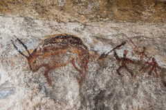 Wall cave with drawings of the primitive person.  Stock Photo