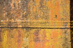 Church wall covered in yellow lichen royalty free stock photography