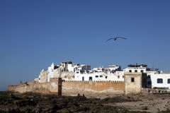 The wall city. View of the walled city of Essaouira in Morocco Royalty Free Stock Photo