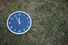 Wall clock in the grass Stock Images