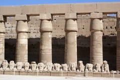 Wall, columns and sheep Royalty Free Stock Photos