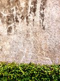 Wall  concrete with  grass  background.  Royalty Free Stock Photography