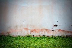 Wall  concrete with green grass.  Stock Photo