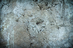 wall concrete surface texture Stock Photography