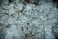 Wall concrete surface texture Royalty Free Stock Photos