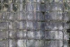 The wall of concrete tiles decorative bricks. textural composition Stock Image