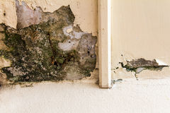 Wall corner decay Royalty Free Stock Images