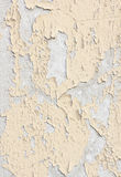 Wall covered with cracked paint Stock Photography