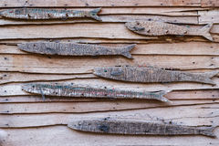 The wall covered with fish wooden. Wooden background horizontal royalty free stock images