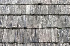 Wall covered by wooden tile, texture stock photography