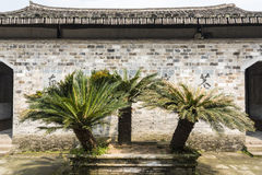 Wall and cycas in The furong academy Royalty Free Stock Photos