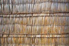 Wall from dead palm leaf, nature texture background Royalty Free Stock Image