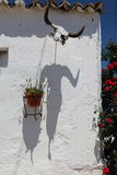 Wall decorated with bull skull and its shadow. White house wall decorated with flowers and skull bull with his shadow Stock Photo