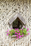 Wall decorative branches Stock Photography