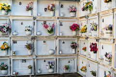 Wall departments, detail of graves in Italian cemetery Royalty Free Stock Photo