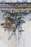 Wall Detail. Weathered and moldy wall detail royalty free stock photography