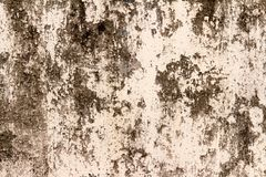 Wall dirty. paint dirty. street wall.textured. background.  Royalty Free Stock Photos