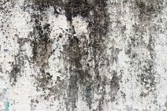 Wall dirty. paint dirty. street wall.textured. background.  Royalty Free Stock Images