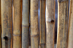 WALL AND DRY BAMBOO BARRIER stock photo