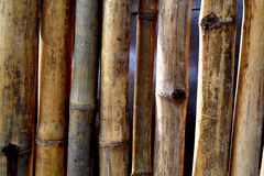 WALL AND DRY BAMBOO BARRIER royalty free stock photo