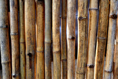 WALL AND DRY BAMBOO BARRIER Stock Images