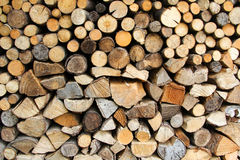 Wall from dry firewood Royalty Free Stock Photo