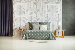 Wall with empty frames. Spacious bright room with wall, empty frames and birch tree wallpaper Royalty Free Stock Image