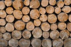 Wall of felled trees Royalty Free Stock Photos