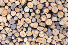 Wall firewood , Background of dry chopped  logs in a pile Royalty Free Stock Photo