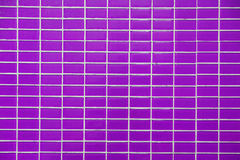 Wall and floor mosaic tiles purple color Royalty Free Stock Images