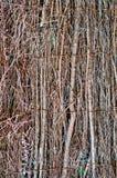 Wall or floor wattle woven Stock Photo