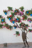 Wall of flower pots in Cordoba Royalty Free Stock Photos