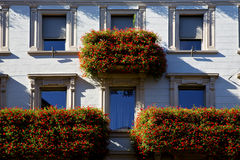 Wall and flower terrace in the   centre   of city lugano Switze Stock Image