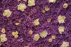 Wall of fresh flowers Royalty Free Stock Photo