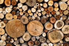 Wall From Dry Chopped Firewood Logs Stacked Up On Top Of Each Other In A Pile. Textured Wooden Background Stock Photo