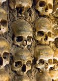 Wall full of skulls and bones Royalty Free Stock Photography