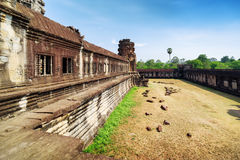 Wall of gallery in ancient temple complex Angkor Wat, Cambodia Royalty Free Stock Image
