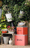 Wall garden in the Netherlands Royalty Free Stock Images