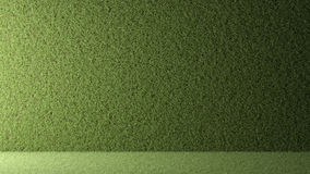 Wall of grass with backlight Stock Photos