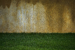 Wall and grass Stock Photography