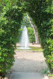 Wall of green tree and fountain Stock Images